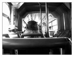 Bus Roma (photo flickr by trydisegna)