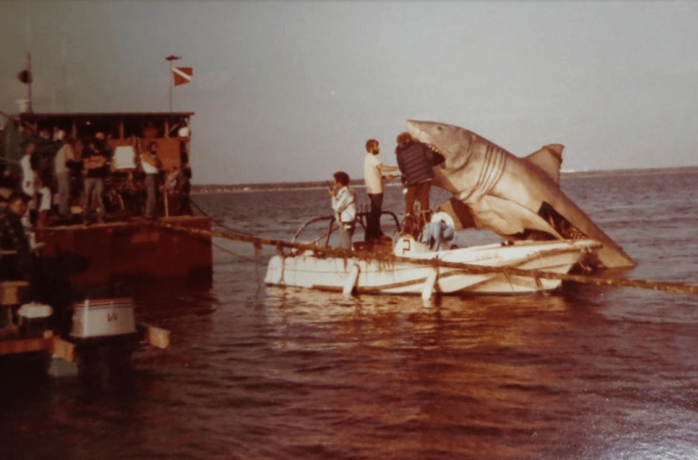 jaws-4.png