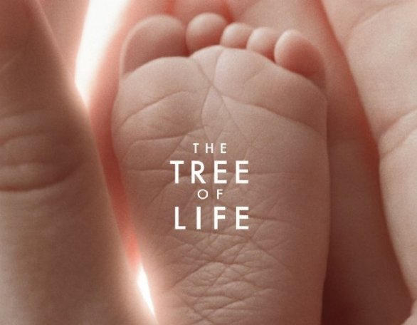 The_Tree_of_life_foto-Poster