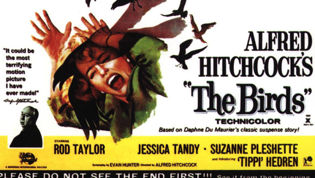 alfred-hitchcock-the-birds-50-years-anniversary-film-poster