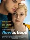 Primo poster per Now is Good