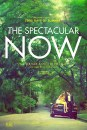 The Spectacular Now: poster
