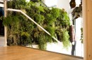 Piante in appartamento: Wally Living Wall System