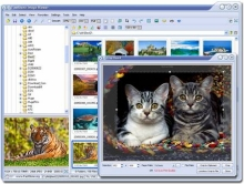 FastStone ImageViewer, meglio di AcDSee?