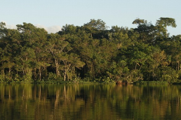 ECUADOR-ENVIRONMENT-OIL-YASUNI