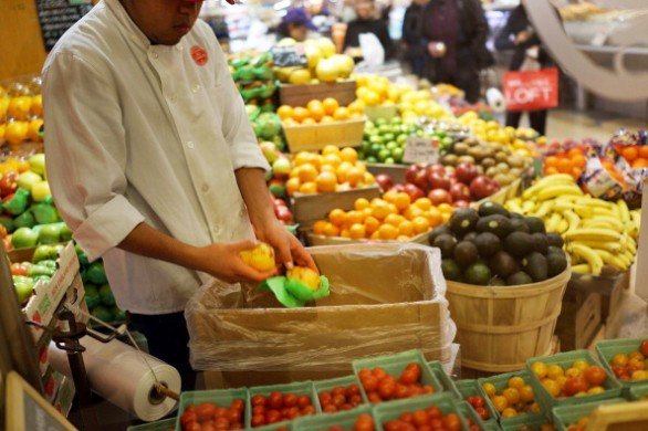 New Study Shows That Half Of World's Food Is Wasted