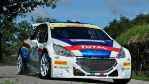 Peugeot 208 R5 T16 Paolo Andreucci