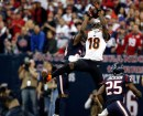 NFL Playoff 2013 Texans-Bengals e Packers-Vikings