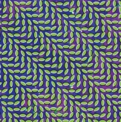 animal_collective_rym