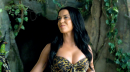 Katy Perry Roar video